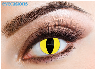 Eyecasions Contact Lenses Feline Daily