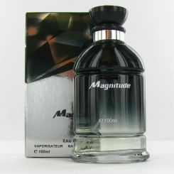Saffron Fragrance Magnitude Man EDT Spray 100ml Mens